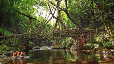The-Living-Root-Bridges