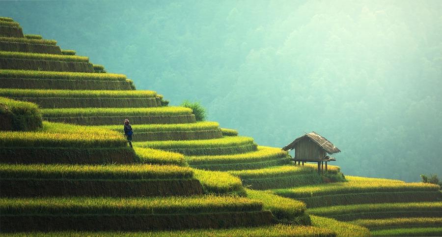 asia-travel-experiences